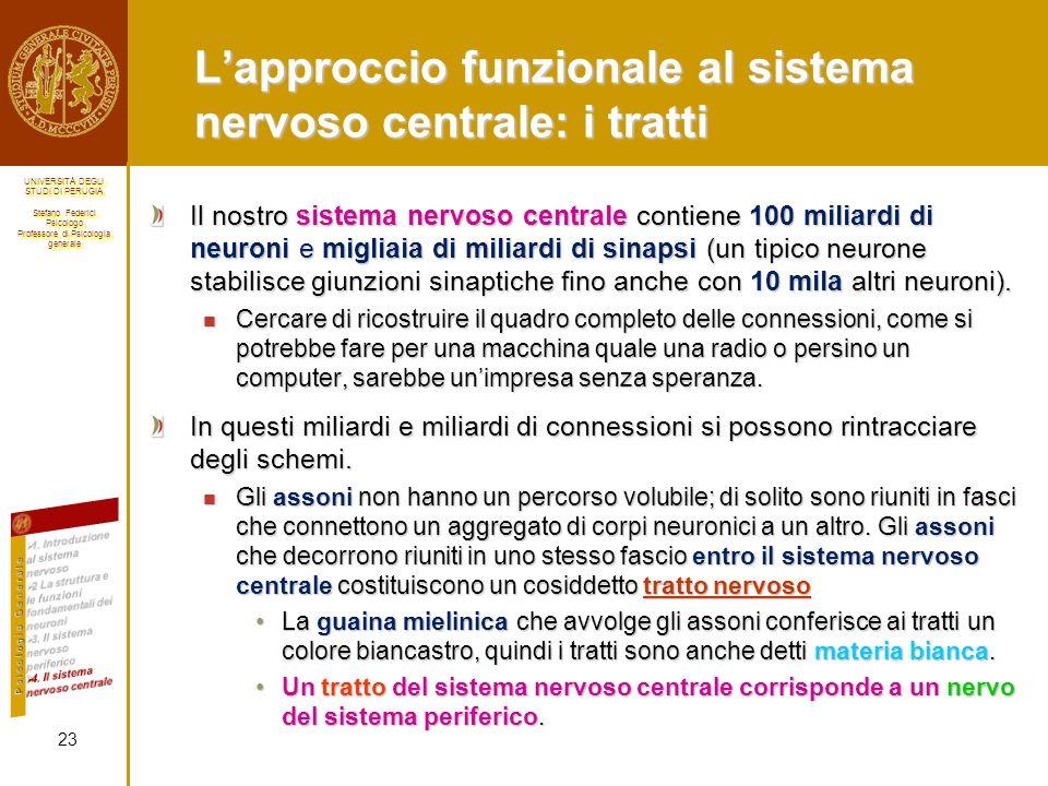 L'approccio funzionale al sistema nervoso centrale: i tratti