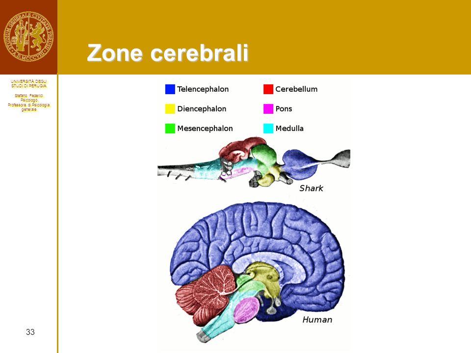 Zone cerebrali