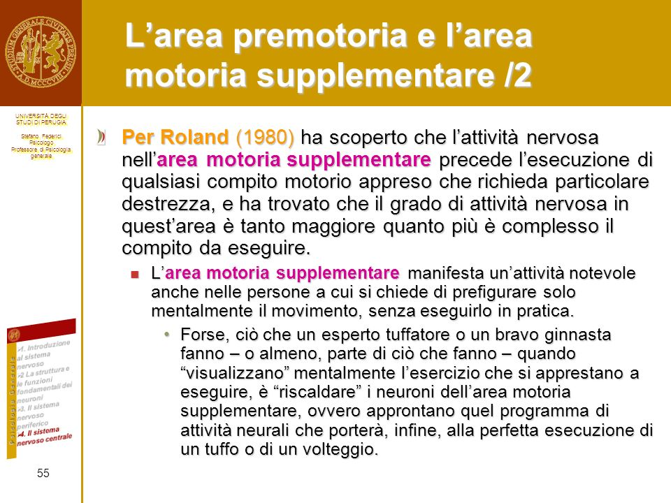 L'area premotoria e l'area motoria supplementare /2