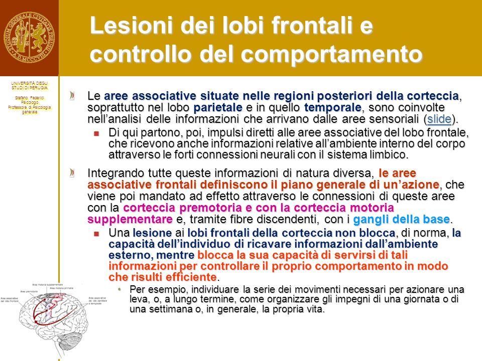 Lesioni dei lobi frontali e controllo del comportamento