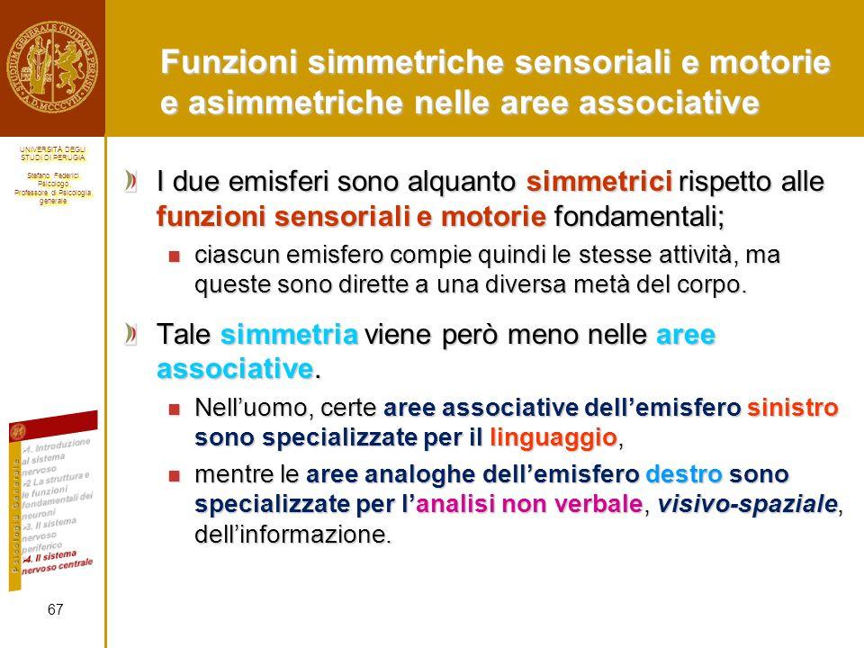 Funzioni simmetriche sensoriali e motorie e asimmetriche nelle aree associative