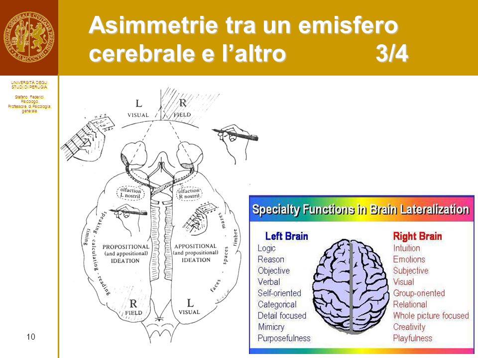 Asimmetrie tra un emisfero cerebrale e l'altro 3/4