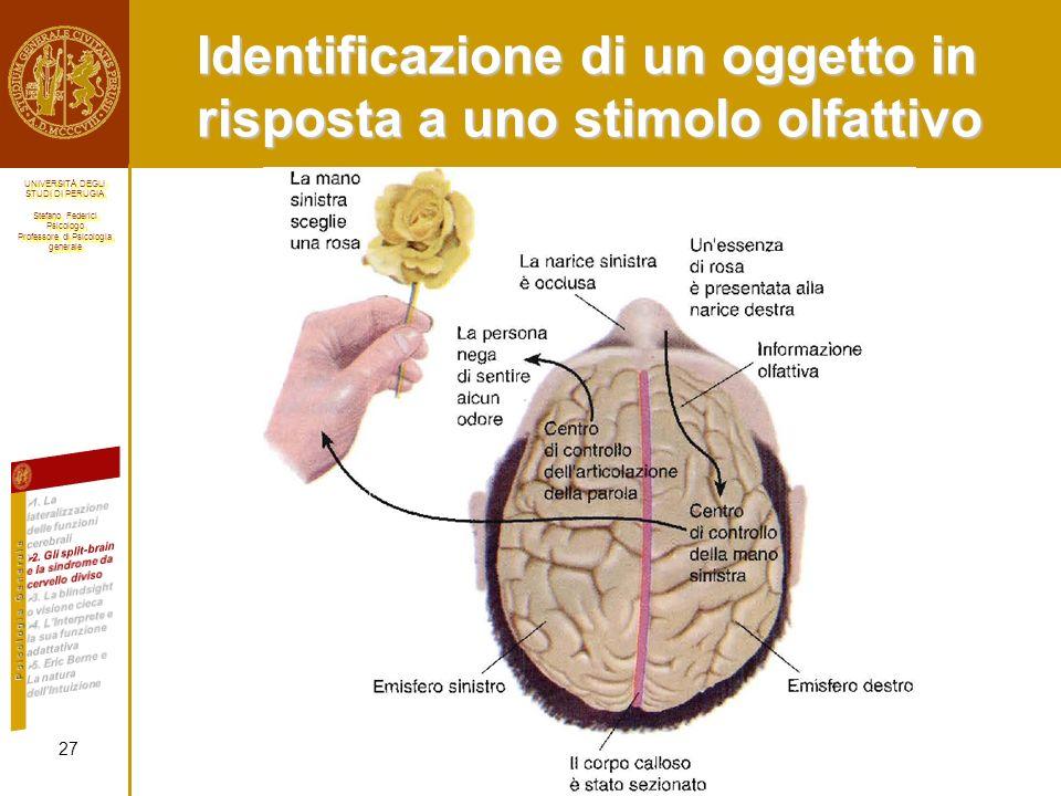 Identificazione di un oggetto in risposta a uno stimolo olfattivo