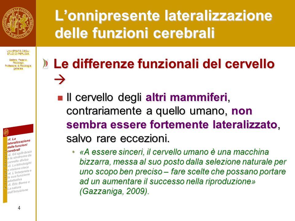 L'onnipresente lateralizzazione delle funzioni cerebrali