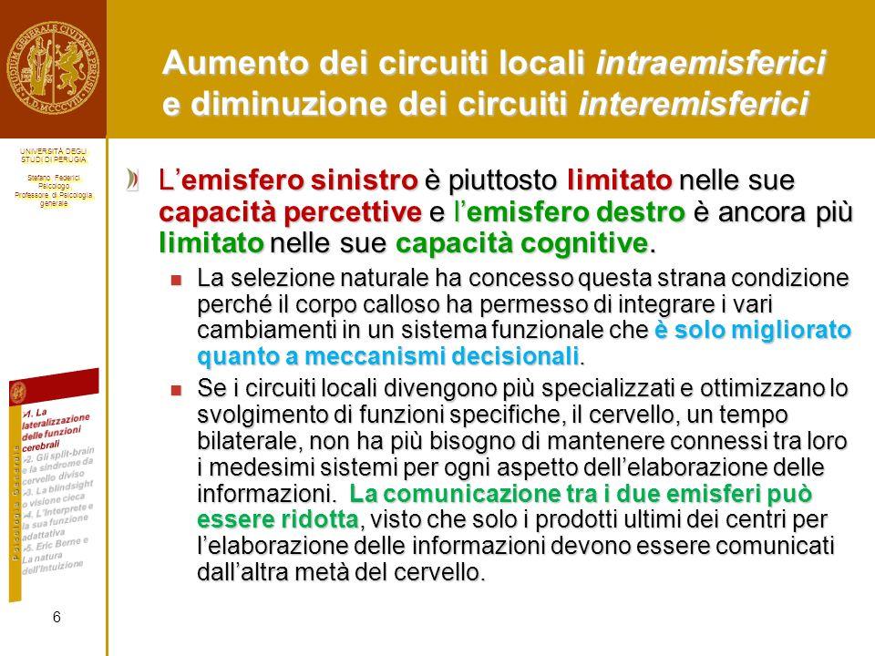 Aumento dei circuiti locali intraemisferici e diminuzione dei circuiti interemisferici