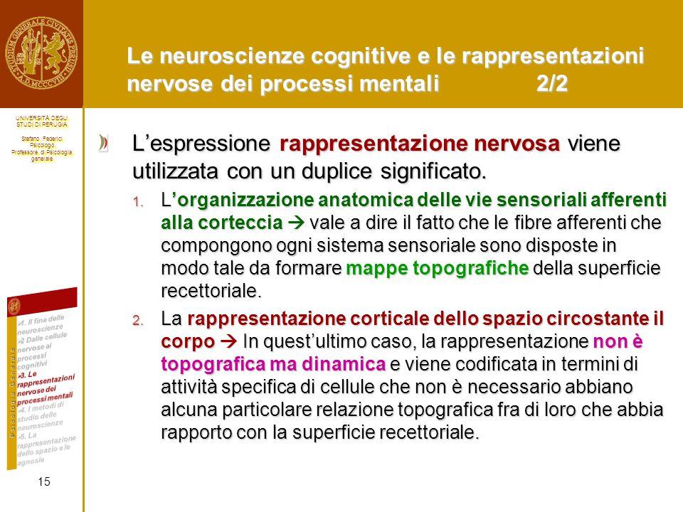 Le neuroscienze cognitive e le rappresentazioni nervose dei processi mentali 2/2
