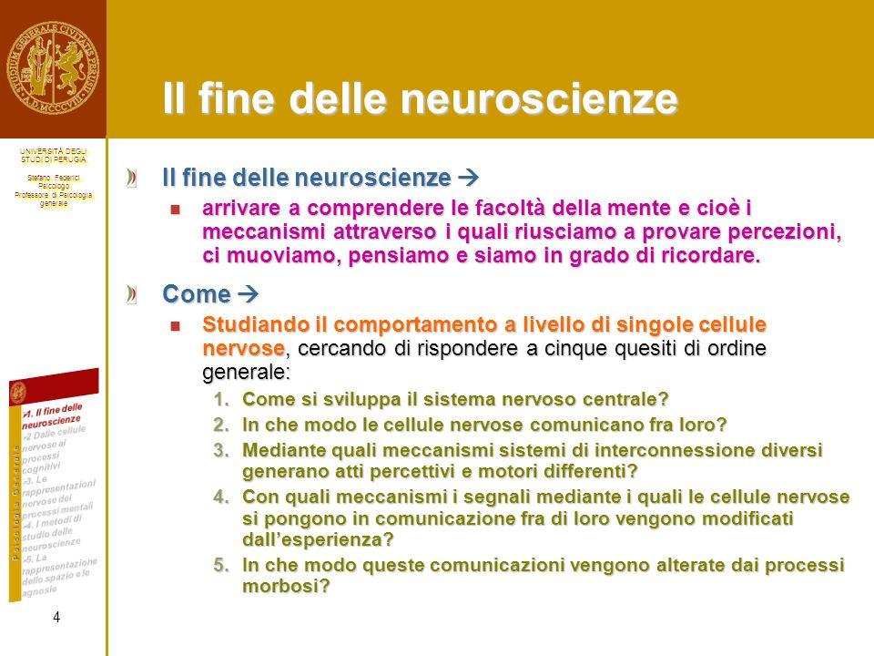 Il fine delle neuroscienze
