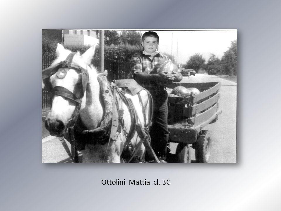 Ottolini Mattia cl. 3C