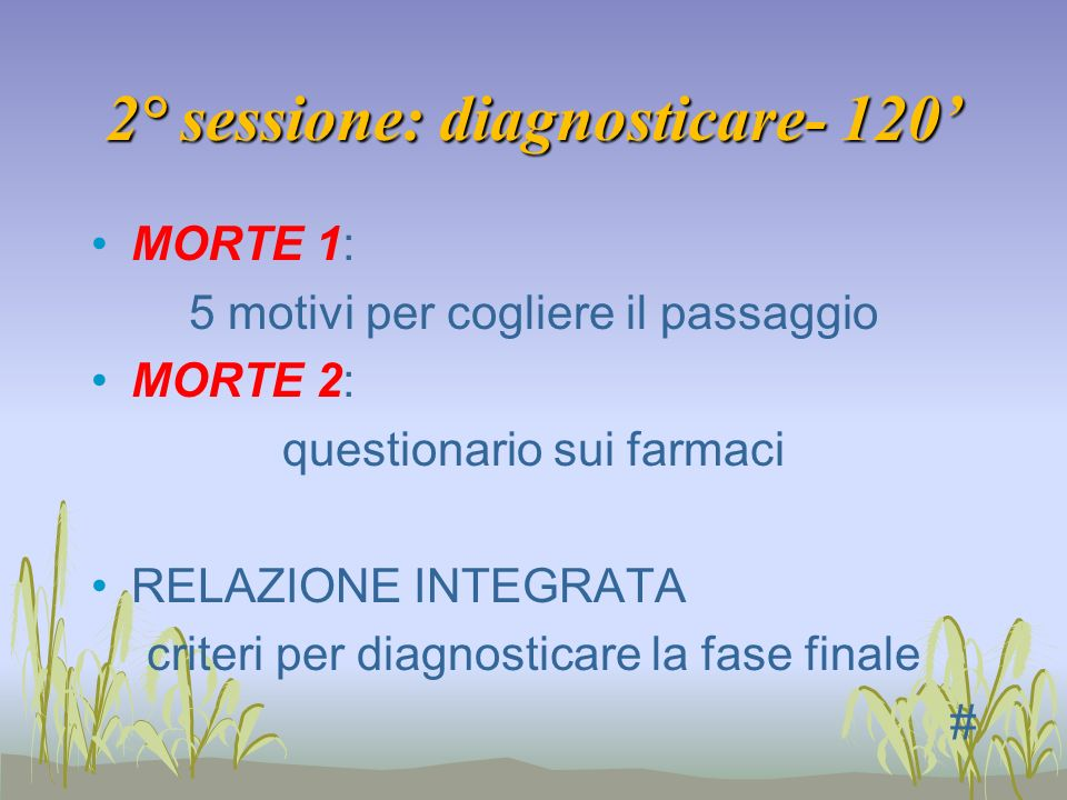 2° sessione: diagnosticare- 120'