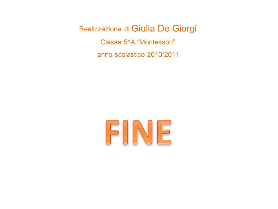FINE Realizzazione di Giulia De Giorgi Classe 5^A Montessori