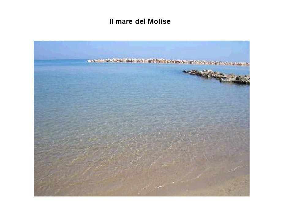 Il mare del Molise torna indietro