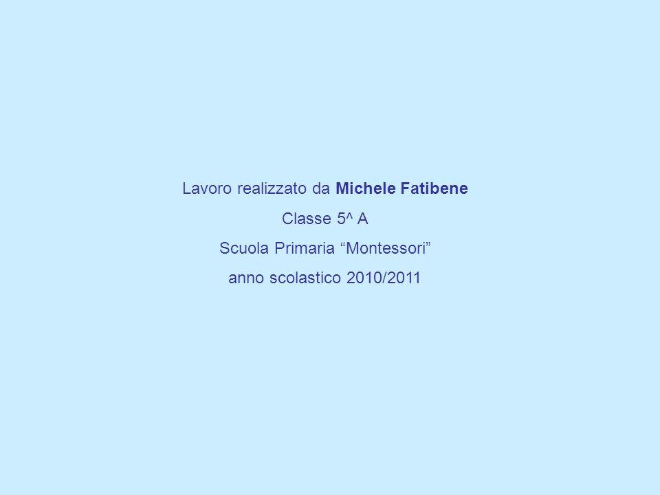 Lavoro realizzato da Michele Fatibene Classe 5^ A