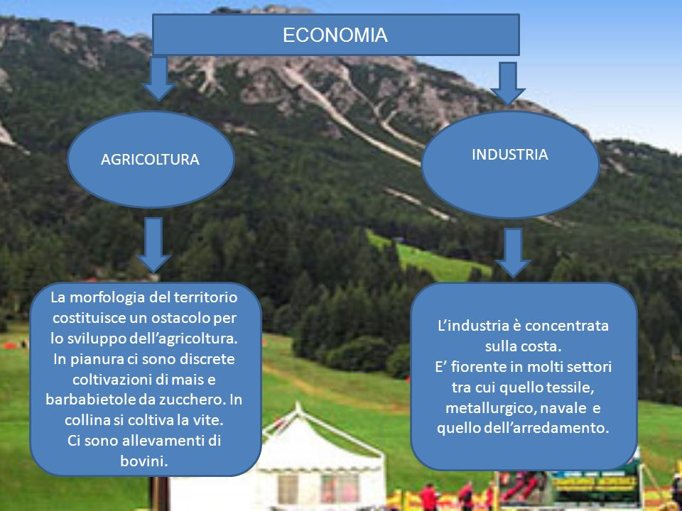 ECONOMIA INDUSTRIA AGRICOLTURA