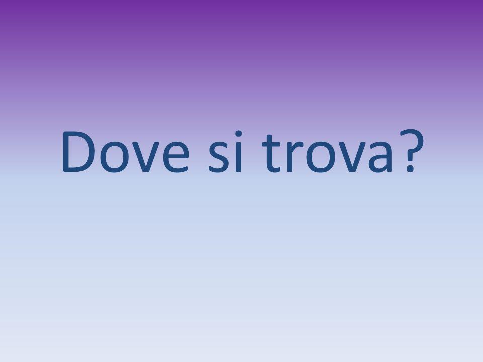 Friuli venezia giulia ppt video online scaricare for Arredo ingross 3 dove si trova