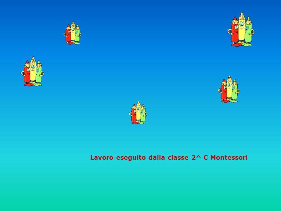 Lavoro eseguito dalla classe 2^ C Montessori