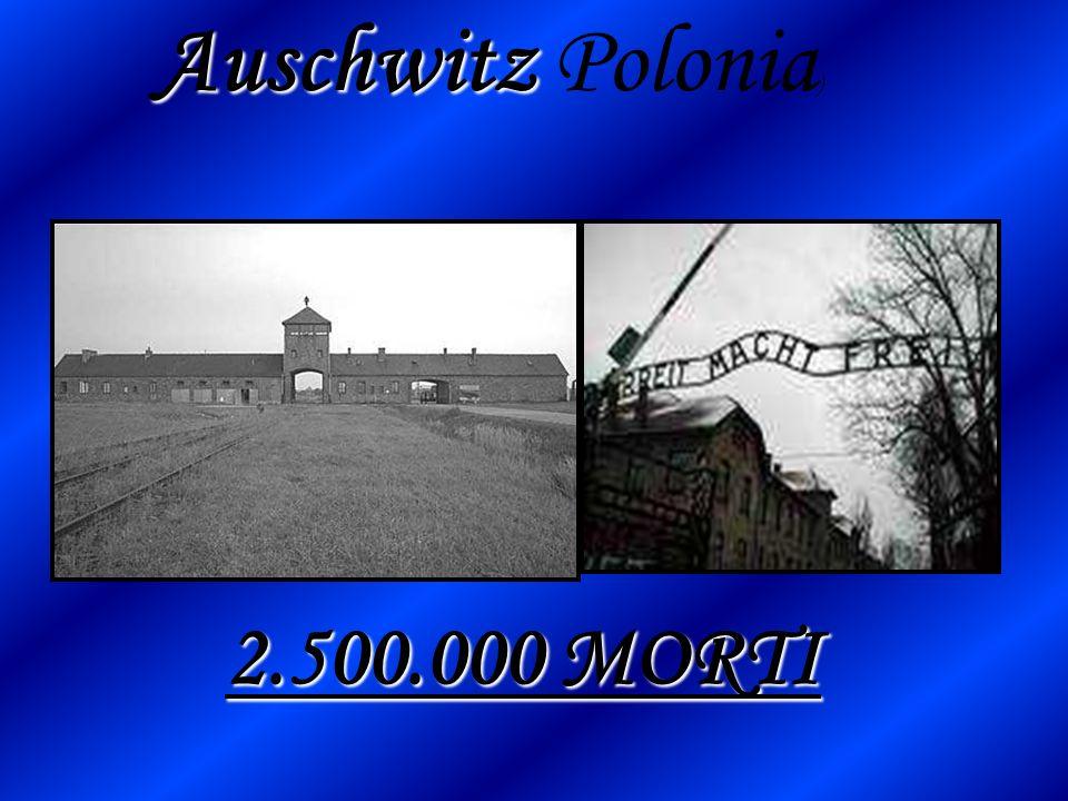 Auschwitz Polonia) 2.500.000 MORTI