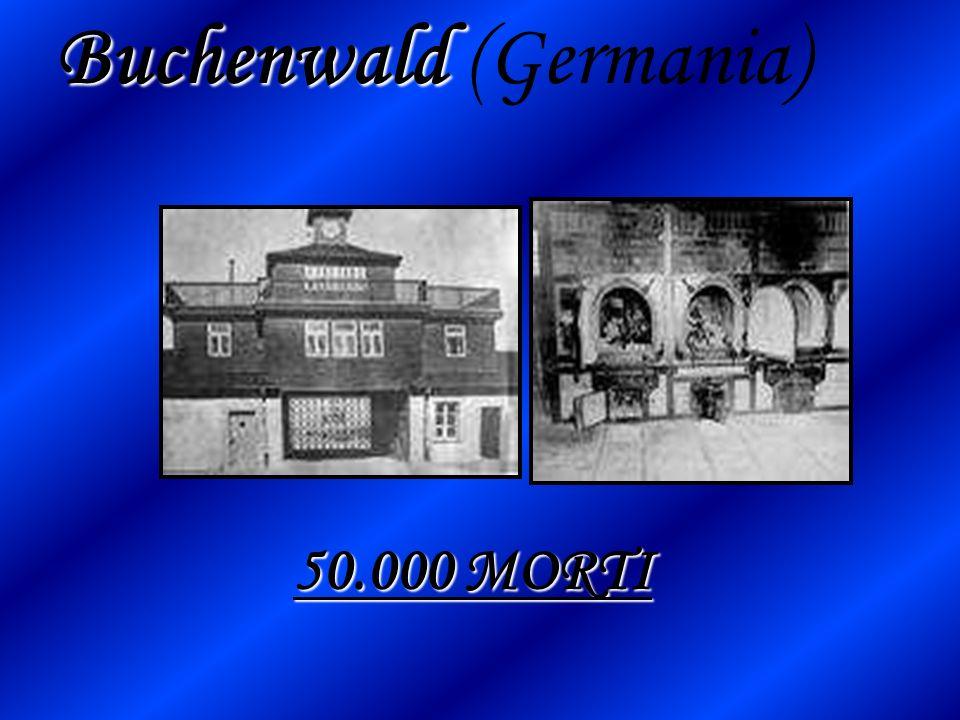 Buchenwald (Germania)
