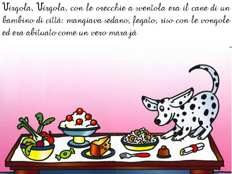 Virgola, Virgola, con le orecchie a sventola era il cane di un bambino di città: mangiava sedano, fegato, riso con le vongole ed era abituato come un vero marajà