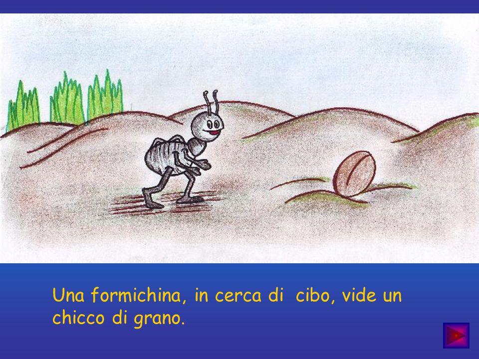 Una formichina, in cerca di cibo, vide un chicco di grano.
