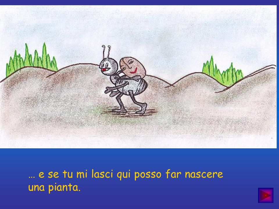 … e se tu mi lasci qui posso far nascere una pianta.