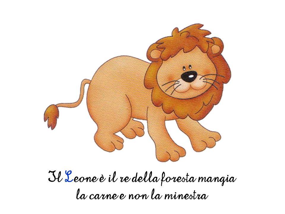 Il Leone è il re della foresta mangia la carne e non la minestra
