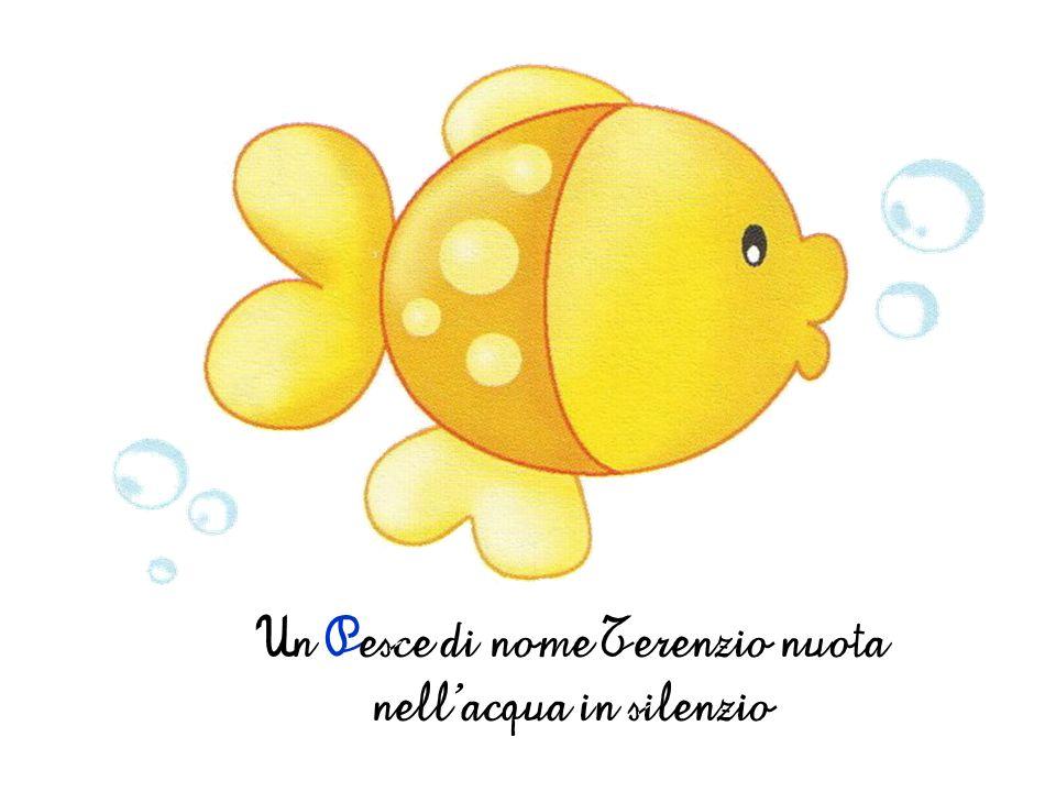 Un Pesce di nome Terenzio nuota nell'acqua in silenzio