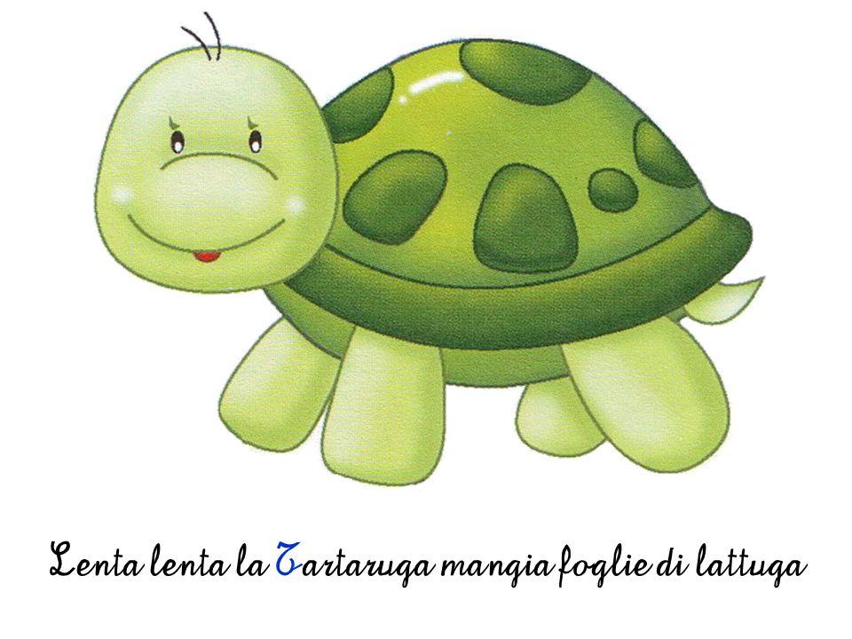 Lenta lenta la Tartaruga mangia foglie di lattuga