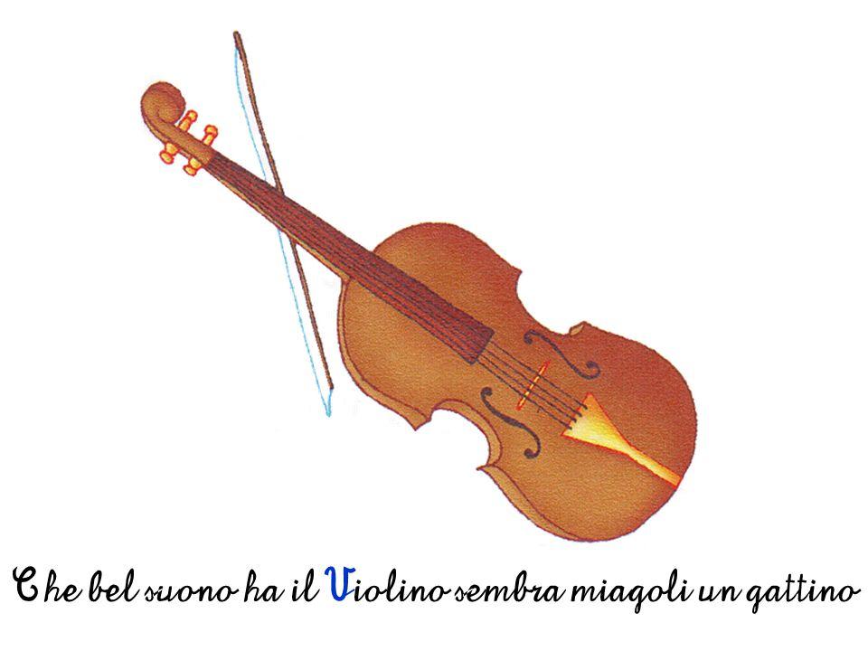 Che bel suono ha il Violino sembra miagoli un gattino