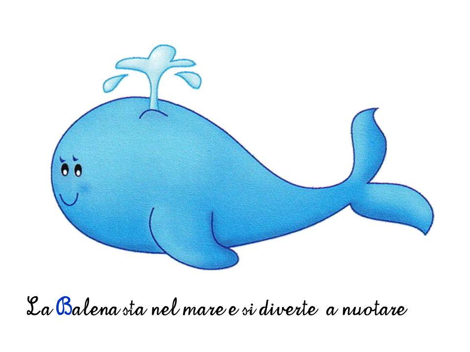 La Balena sta nel mare e si diverte a nuotare