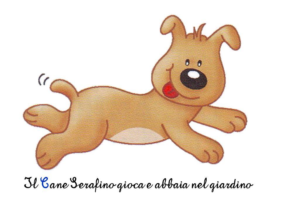 Il Cane Serafino gioca e abbaia nel giardino