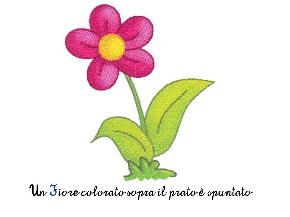 Un Fiore colorato sopra il prato è spuntato