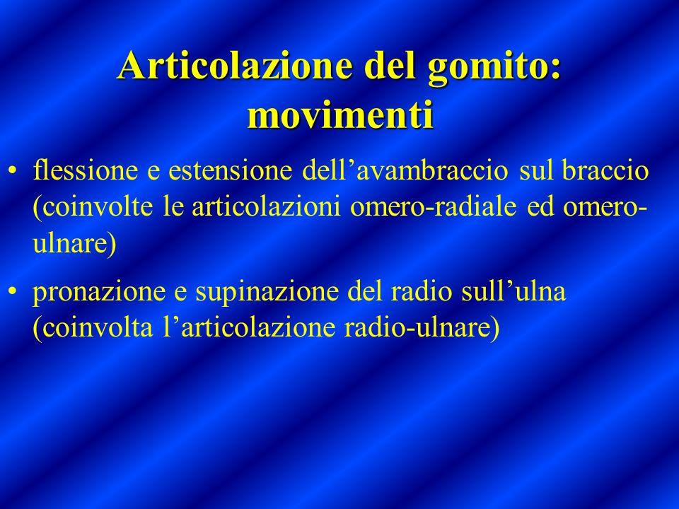 Articolazione del gomito: movimenti