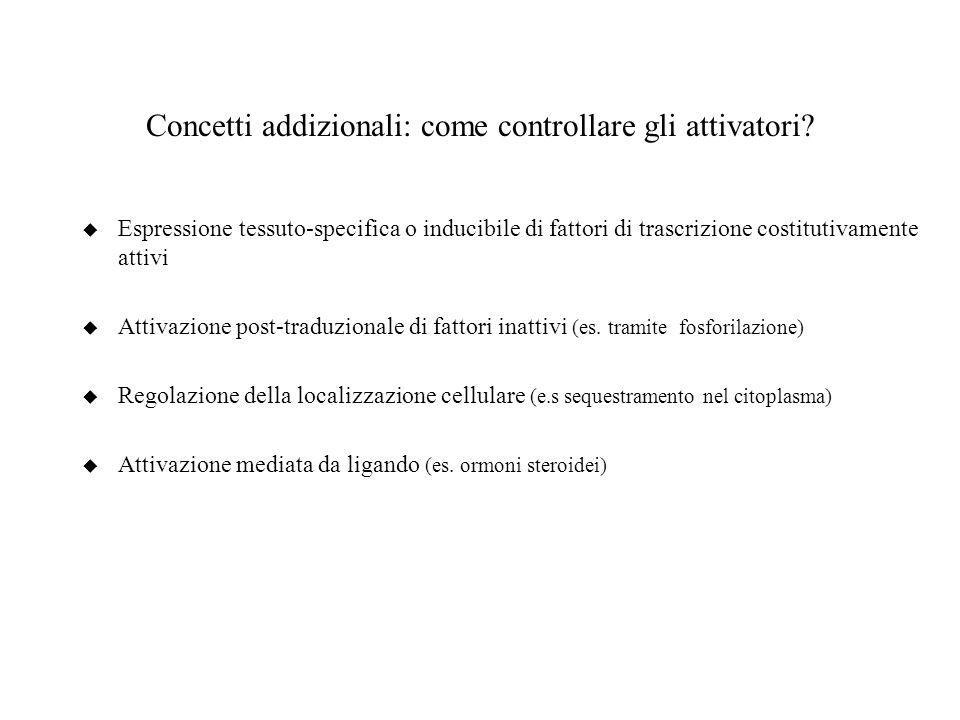 Concetti addizionali: come controllare gli attivatori