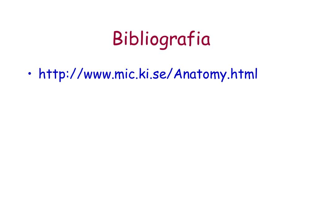 Bibliografia http://www.mic.ki.se/Anatomy.html