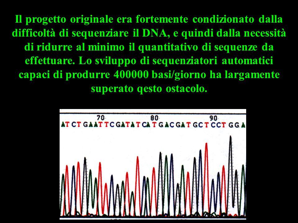 Il progetto originale era fortemente condizionato dalla difficoltà di sequenziare il DNA, e quindi dalla necessità di ridurre al minimo il quantitativo di sequenze da effettuare.