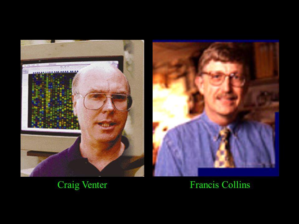 Craig Venter Francis Collins