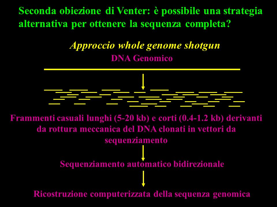 Approccio whole genome shotgun
