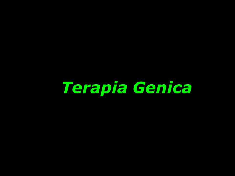 Terapia Genica