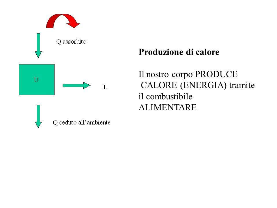 Produzione di calore Il nostro corpo PRODUCE CALORE (ENERGIA) tramite il combustibile ALIMENTARE