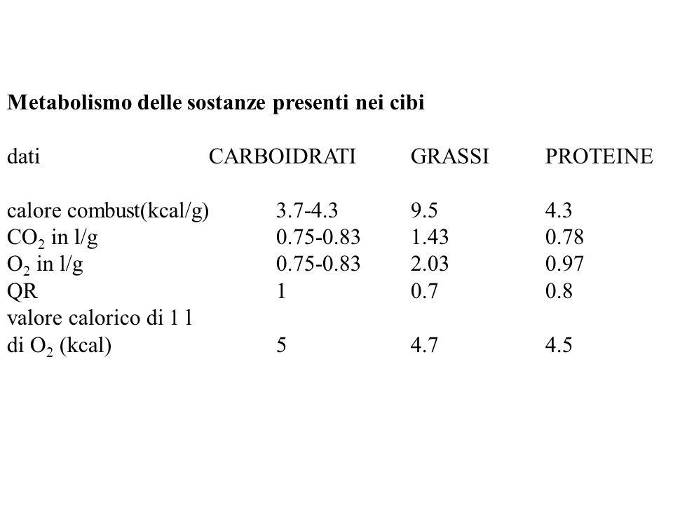 Metabolismo delle sostanze presenti nei cibi