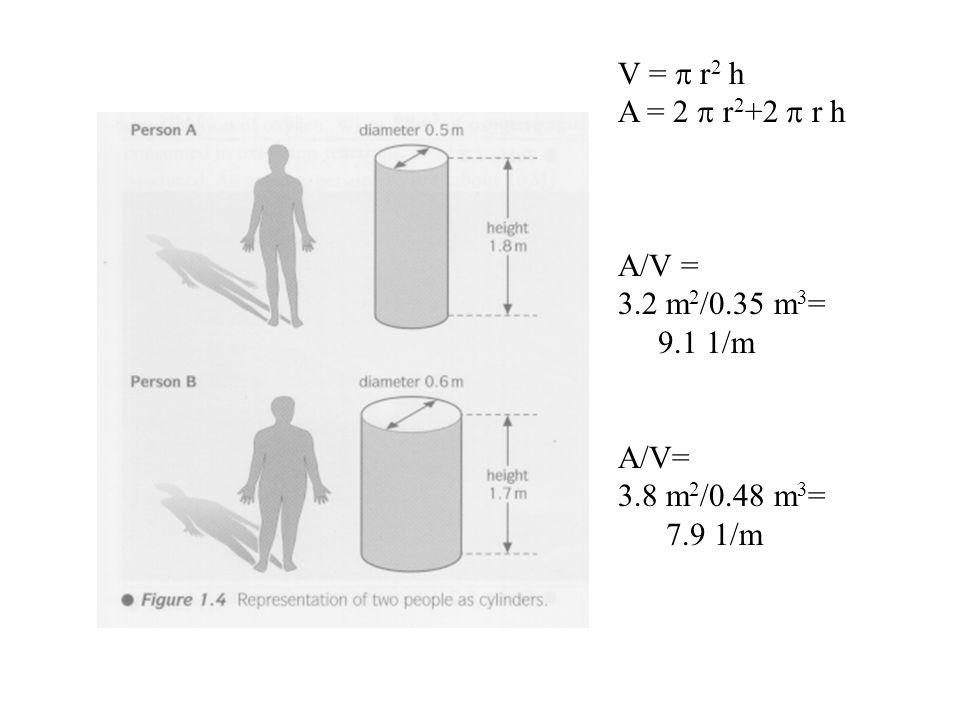 V = p r2 h A = 2 p r2+2 p r h A/V = 3.2 m2/0.35 m3= 9.1 1/m A/V= 3.8 m2/0.48 m3= 7.9 1/m