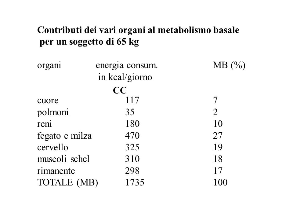 Contributi dei vari organi al metabolismo basale
