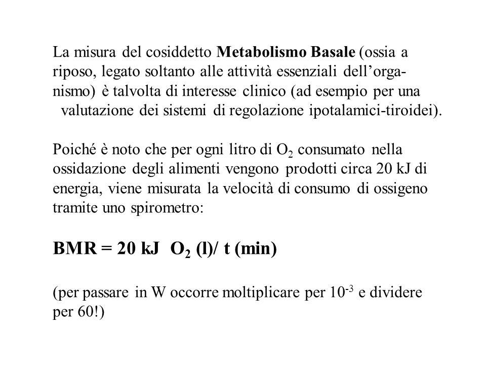 La misura del cosiddetto Metabolismo Basale (ossia a