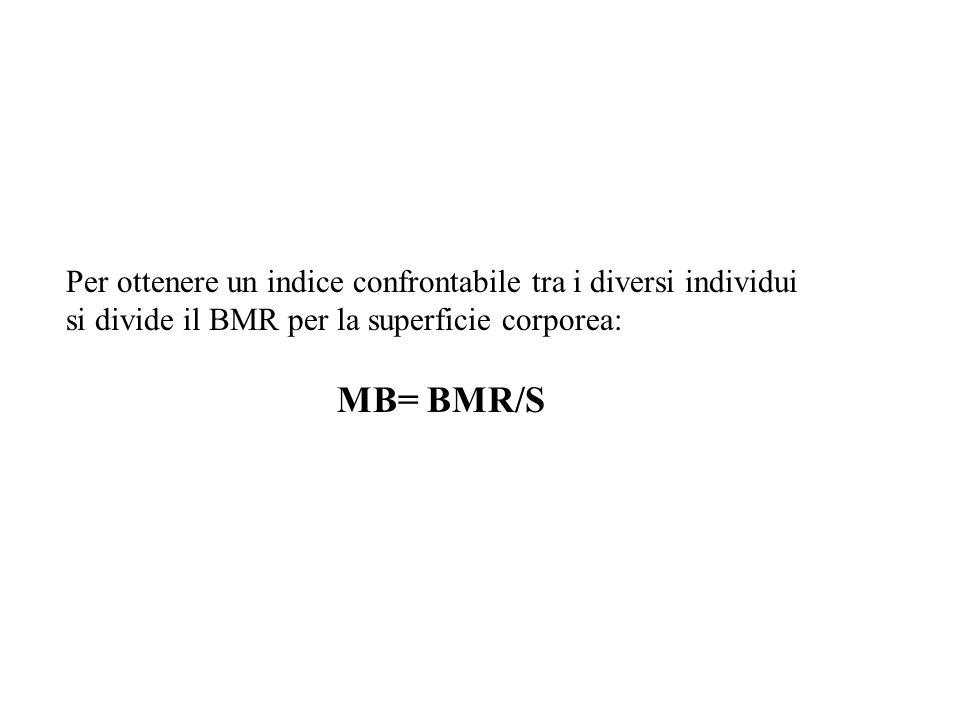 MB= BMR/S Per ottenere un indice confrontabile tra i diversi individui