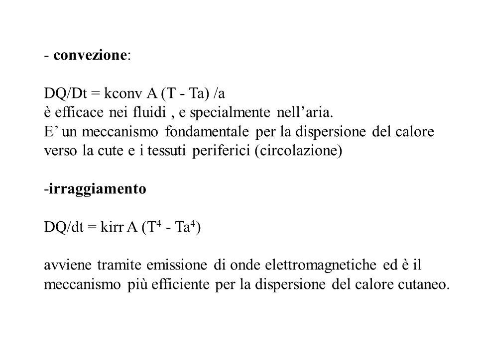 - convezione: DQ/Dt = kconv A (T - Ta) /a. è efficace nei fluidi , e specialmente nell'aria.