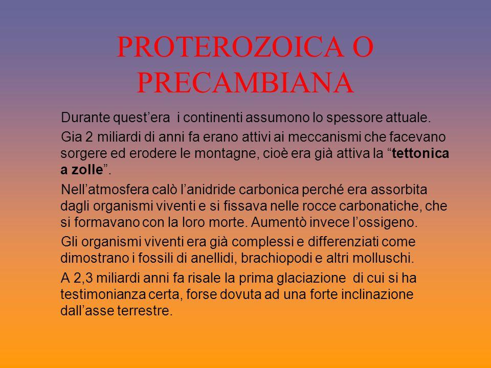 PROTEROZOICA O PRECAMBIANA