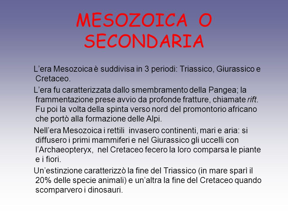 MESOZOICA O SECONDARIA