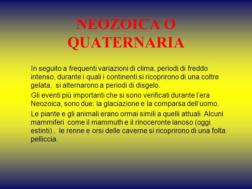 NEOZOICA O QUATERNARIA