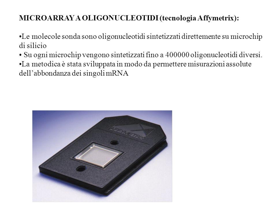 MICROARRAY A OLIGONUCLEOTIDI (tecnologia Affymetrix):