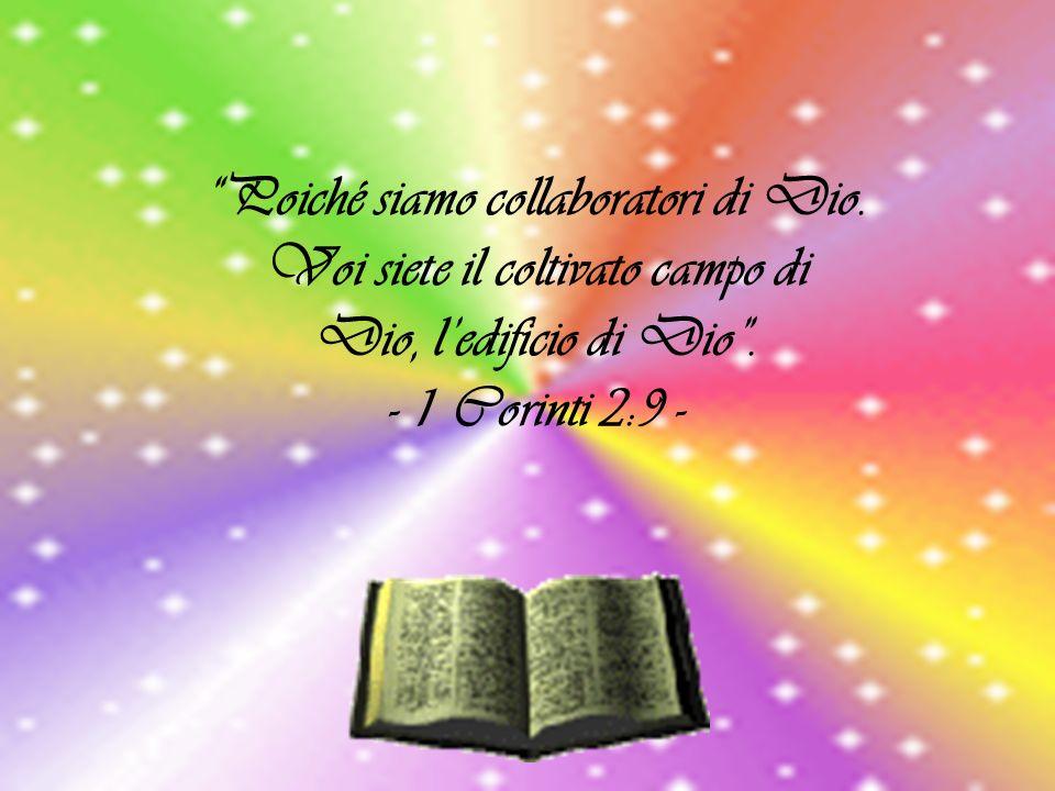 Poiché siamo collaboratori di Dio. Voi siete il coltivato campo di